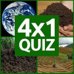 4×1 Bilder Quiz