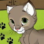 Style dein Kätzchen