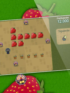 Bild Berry Bug