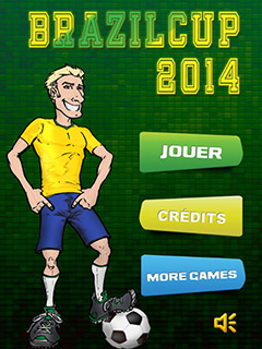 Bild Brazil Cup 2014