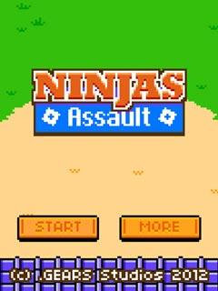 Bild Ninja Kampf