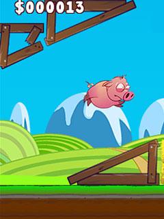 Bild Run Pig Run